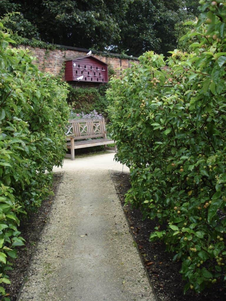 Garden path with bench and bird hotel