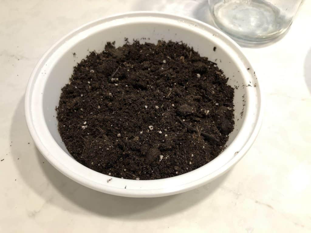 Potting soil in white circle tray